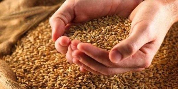 Аграрии Арцизского района завершили уборку урожая