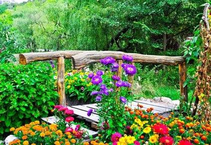 Мостики в цветах