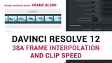DaVinci Resolve 12 - 38a Frame Interpolation and Clip Speed
