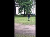 Полицейский стреляет в собаку