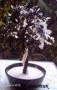 Часть 1. Часть 2. Часть 3 - Мастер-класс по дереву Инь-Янь Часть 4. Дерево Глициния из бисера.