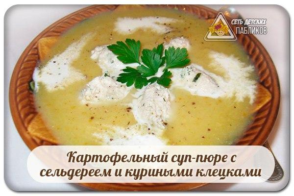 Суп пюре сельдерея рецепт фото