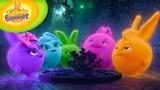 Cartoons for Children Sunny Bunnies 107 - Fireflies (HD - Full Episode)