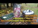 В поход без плитки беспламенный нагреватель пищи и свинина с фасолью консервы