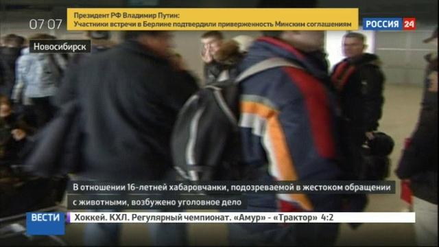 Новости на Россия 24 • Против 16-летней живодерки из Хабаровска заведено уголовное дело