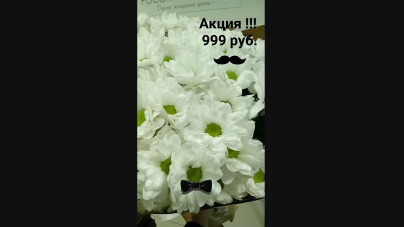 Букет из ромашек (вид хризантемы) 9 кустов.
