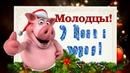 Новогодние загадки 2019 Загадки на новый год год свиньи