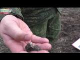 ЛНР ВСУ из минометов обстреляли село Красный Лиман
