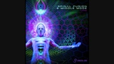 Middle Mode &amp Spinal Fusion - Orb