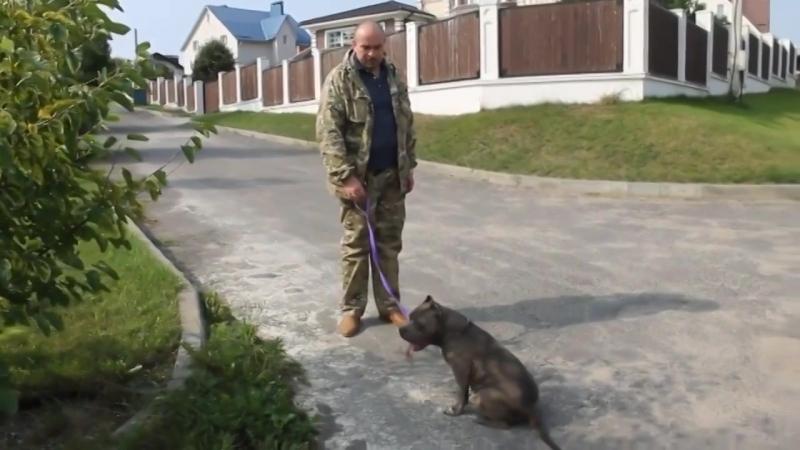Верри и Сергей. Сентябрь 2018