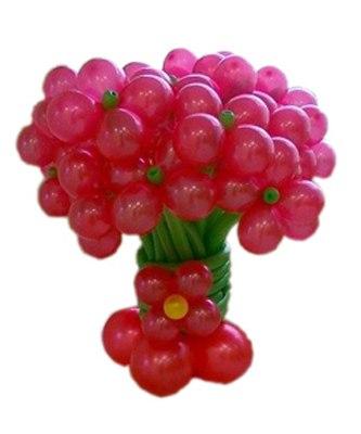 №016. Воздушные шары «Красивая мечта»