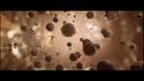 Человек-муравей и Оса Quantum Realm Special Look