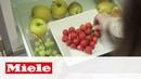 Новые холодильники серии К 20.000. Теперь в исполнении Blackboard edition Miele