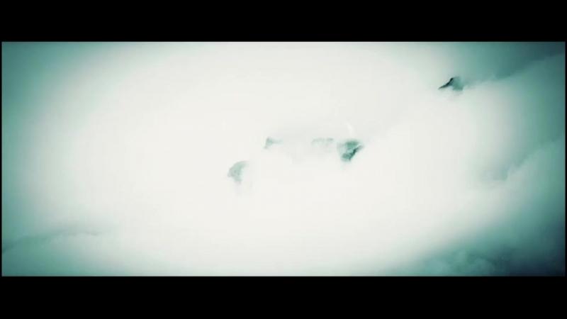 5 ceрия ОРЁЛ и ПЧЕЛА BaibaKo