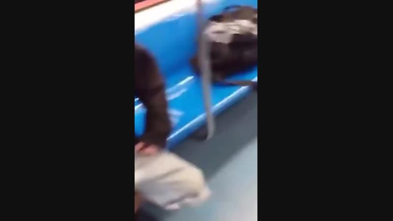 Русский парень заступился за пассажира