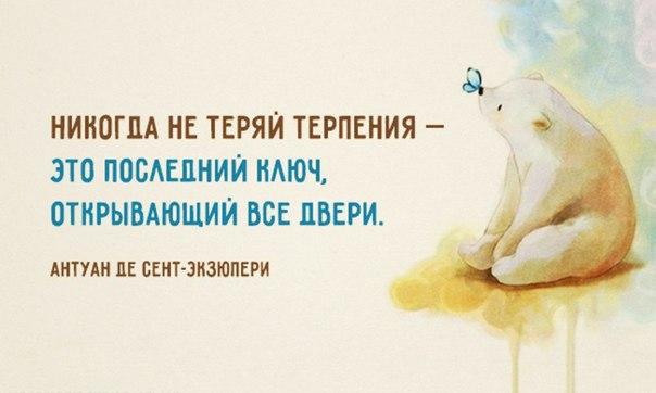 http://cs543101.vk.me/v543101537/8901/M51TE-bzvuM.jpg