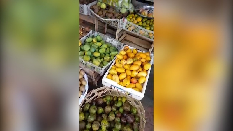 Разнообразие фруктов на острове Бали