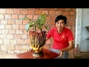 How to make flower pots from cloth and gloves