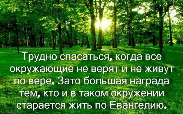 https://pp.vk.me/c320520/v320520743/28e6/IG-b68lnrgU.jpg