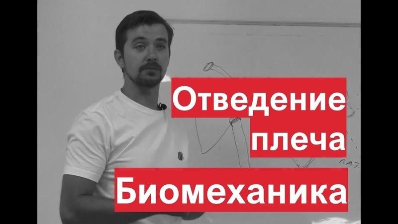 Отведение плеча. Биомеханика. Разбор мышц движения. Александр Пилюгин.