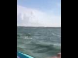 На БТРе по морю, Таганрогский залив