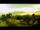 S.T.A.L.K.E.R. - Истории из Преисподней