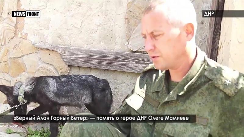 Верный Алан Горный Ветер память о герое ДНР Олеге Мамиеве