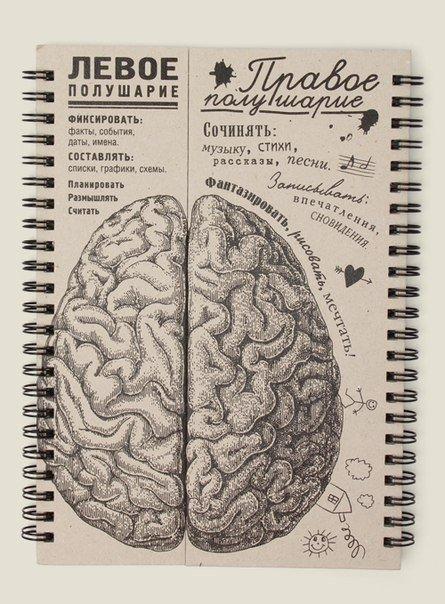 Блокнот-мозг. Блокнот для работы и творчества, но больше для творчества, т.к. правое полушарие блокнота больше.