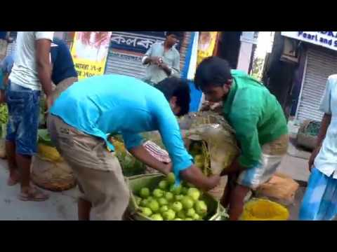 Baruipur City   Baruipur Town Road Side Lychee and Guava Market Near Flyover