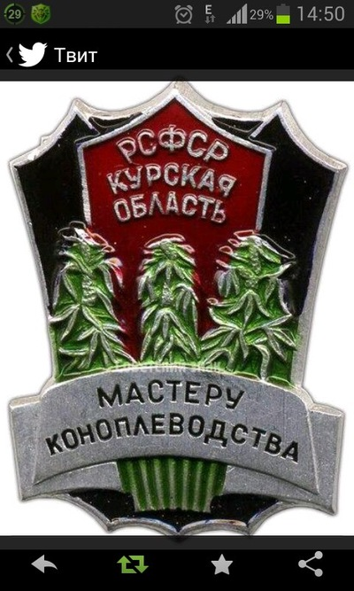 Денис Юдников