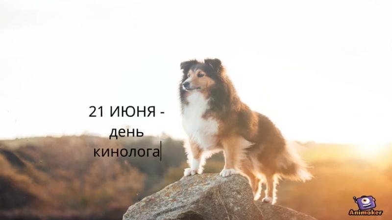 💚 Обзор праздников на тему домашних животных...