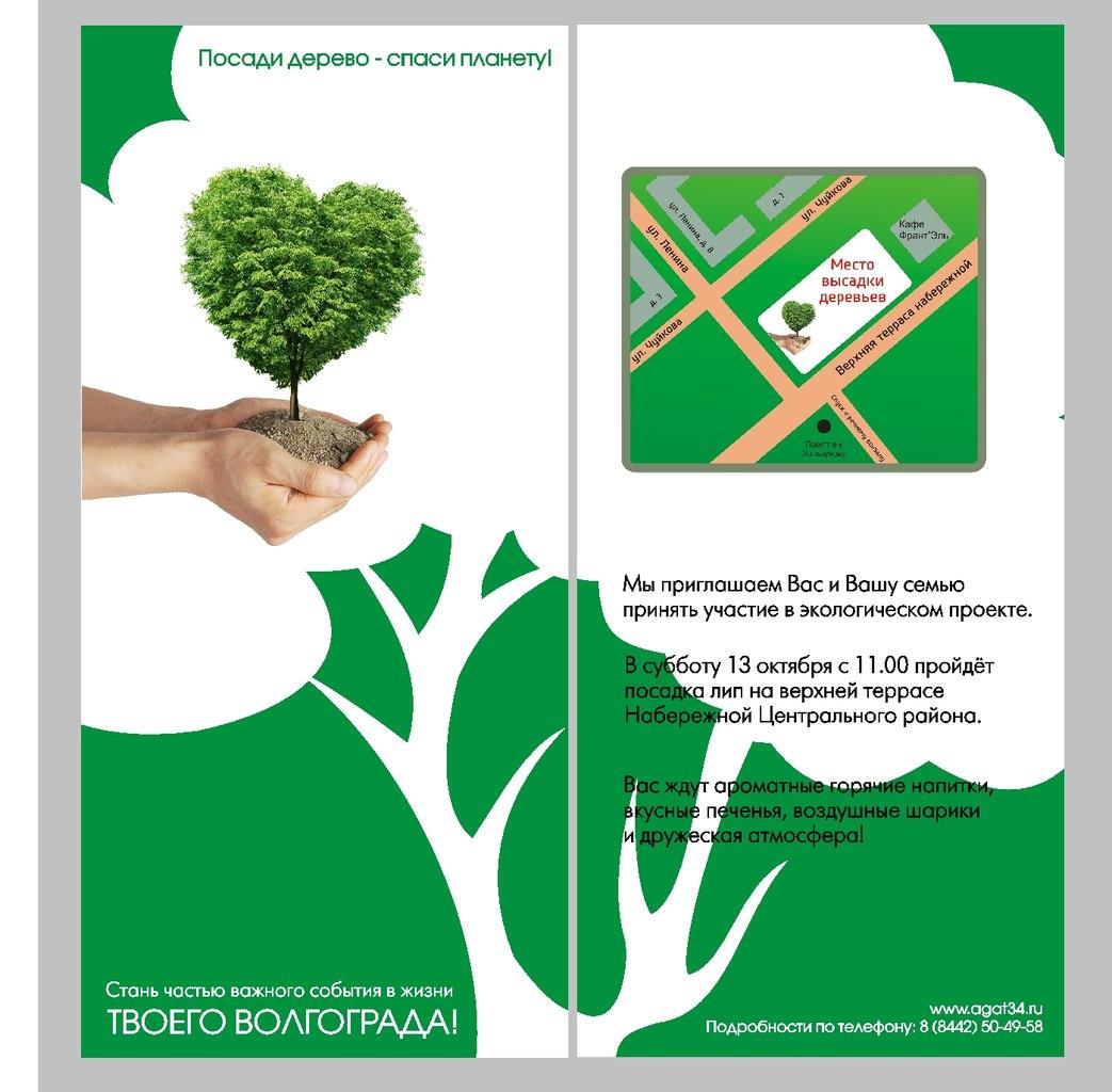 Посади дерево мне в подарок 797