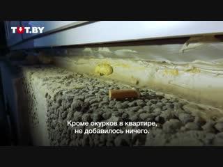 В ЖК «Маяк Минска» дом сдали через полтора года