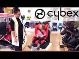 Cybex Solution M Fix Group 2 &amp 3 Car Seat -