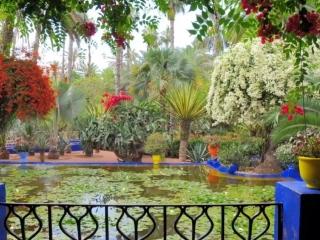 Красивые сады мира. Музыка Иоганн Штраус _На прекрасном голубом Дунае_ ( 720 X 960 ).mp4