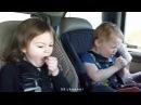 Самые смешные видео за 2013 год