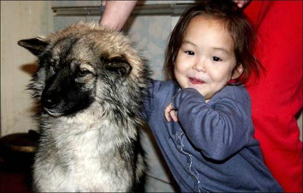 В якутском аэропорту установлен памятник девочке с собакой Эта скульптура напоминает об истории чудесного спасения четырехлетней жительницы села Олом, заблудившейся в 2014 году в тайге и была