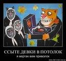 Дмитрий Орлов фотография #23