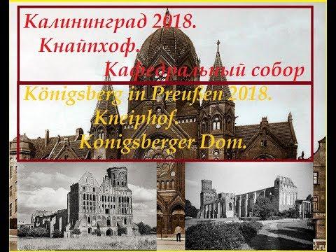 Калининград 2018. Кнапхопф .Кафедральный собор.Königsberg in Preußen .Kneiphof.Konigsberger Dom