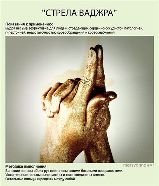МУДРЫ - ЙОГА ДЛЯ ПАЛЬЦЕВ P2ka1C00fG0
