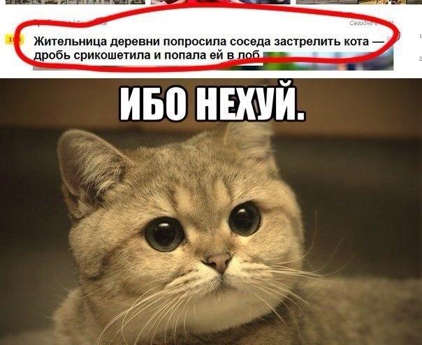 картинки кот-баюн
