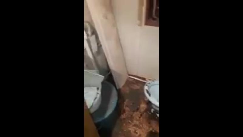 Пенсионер в туалете провалился в квартиру соседей