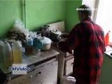 Кунгур: ферма на дому (Перм.обл.) 07.05.2014