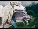 Биткоин забой овец еще впереди