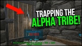 TRAPPING THE ALPHA TRIBE! ARK Official PvP Ragnarok - Ep.11