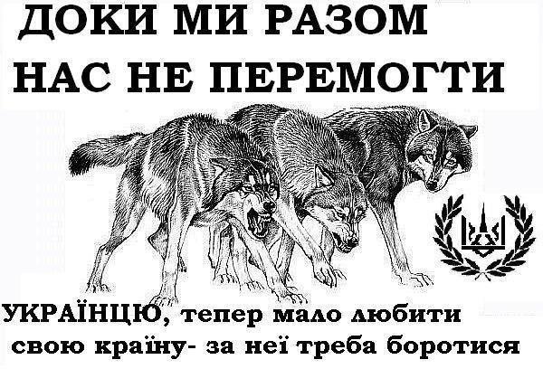 """Прикарпатцы передали 2 машины скорой помощи для бойцов """"Правого сектора"""" - Цензор.НЕТ 6505"""