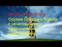 Полуйчик Игорь Оружие Победы в борьбе с нечеловеческой паразитической цивилизацией
