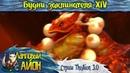 TheAion [3.0]: Будни заклинателя XIV / Стрим 44