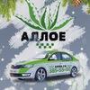 Такси Петергоф Стрельна «Аллое» 385-55-50