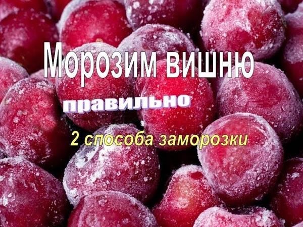 Как заморозить вишню. Правильный, проверенный способ, ягодка к ягодке. Заготовка на зиму.